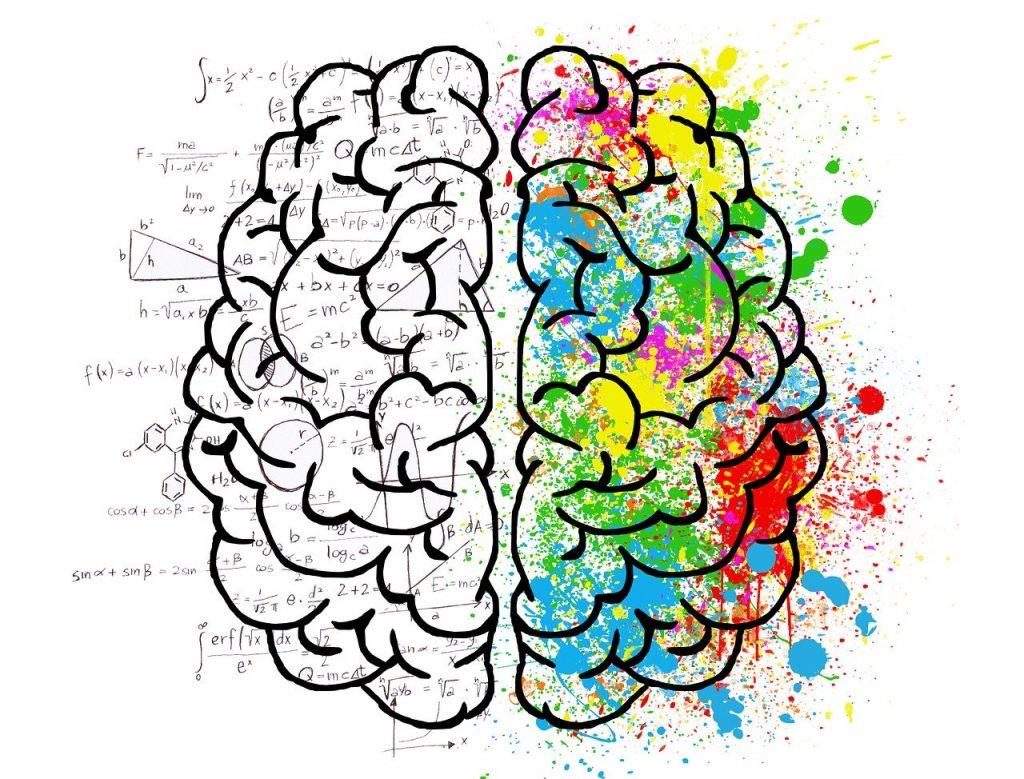 brain, mind, psychology